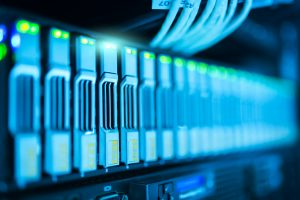 How to choose a web hosting for beginners